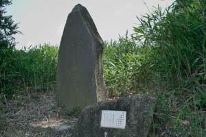 SDIM1803